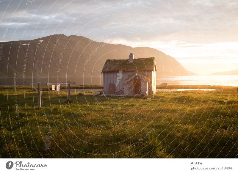 Dream. Cabin. Norway Harmonious Vacation & Travel Landscape Coast Bay Midnight sun Scandinavia Hut Illuminate Happy Contentment Joie de vivre (Vitality) Safety