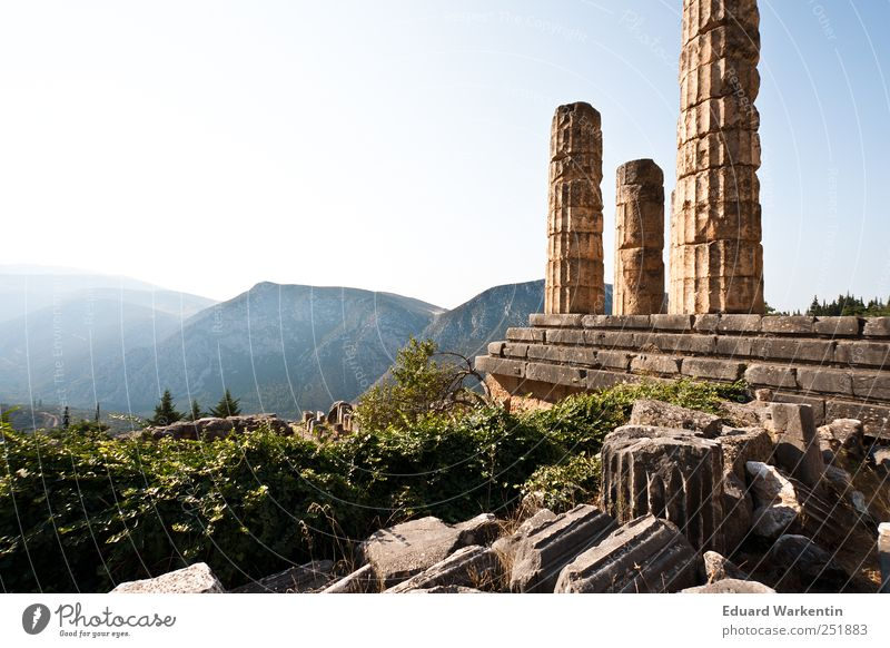 The Temple of Apollo Old town Ruin Past Transience Lose Greece Delphi Peloponnese Oracle Apollon Antiquity Mountain Column Architecture Stone Old times Plant