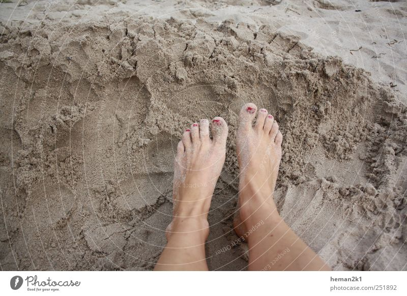 patch feet in the sand Summer Beach Woman Adults Legs Feet 1 Human being Sand Colour photo Exterior shot Day
