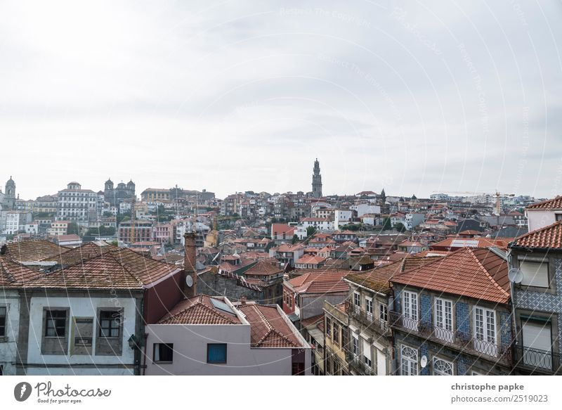 Portos Roofs Portugal Europe Town Downtown Old town House (Residential Structure) Vacation & Travel Travel photography City trip Colour photo Exterior shot