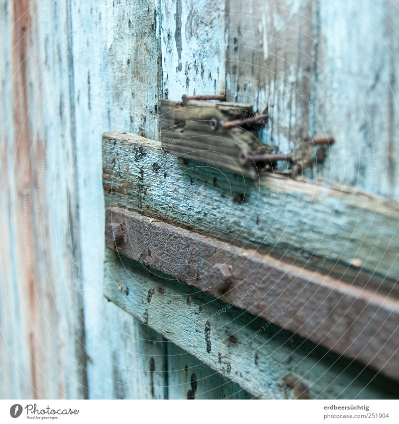 weathered High-rise Door Wood Old Blue Gate Storage shed Brittle Decompose Nail Flake off Colour Weathered Time Transience Colour photo Detail Copy Space top