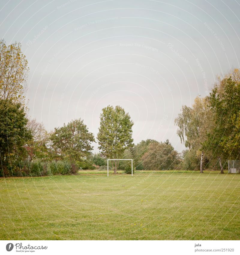 playing field Goal Football pitch Environment Nature Sky Autumn Plant Tree Grass Foliage plant Meadow Esthetic Natural Clean Blue Green Colour photo
