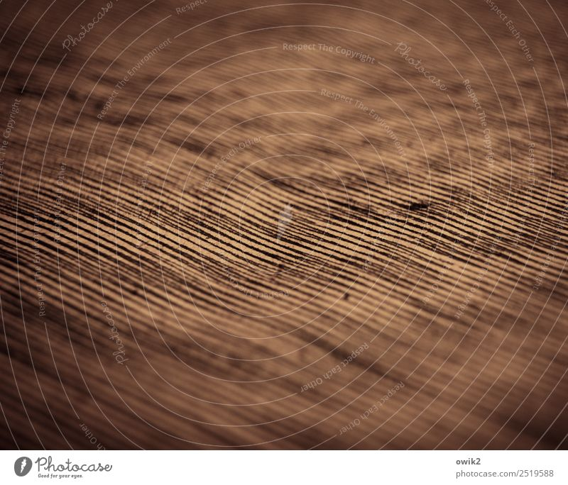farewell Art Work of art Drawing Illustration Line interference Dark Many Vignetting Colour photo Subdued colour Interior shot Detail Abstract Pattern