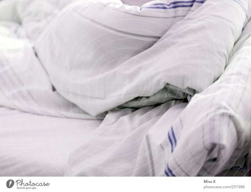 grey Bed Sleep Gray White Bedclothes Blanket Striped Cover up Colour photo Subdued colour Interior shot Close-up Pattern Deserted Morning Dawn Light High-key