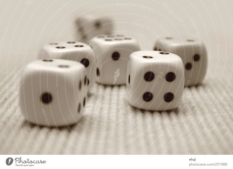 The die is cast Leisure and hobbies Playing Game of chance Children's game Black White Joy Compulsive gambling Dice Toys Kniffel number of points Colour photo