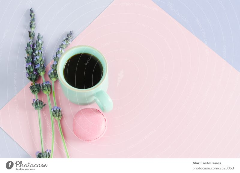 Cup of coffee with macaroons and lavender flowers Dough Baked goods Breakfast Beverage Hot drink Coffee Espresso Style Design Summer Decoration Desk Table