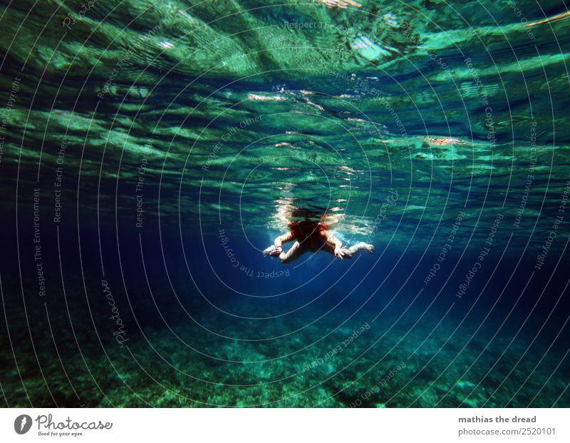 under the sea Joy Aquatics Swimming & Bathing Dive Feminine Young woman Youth (Young adults) Nature Water Beautiful weather Ocean Bikini Movement Sports