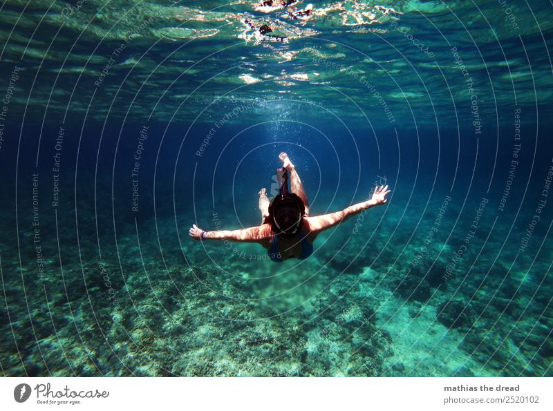 under the sea Vacation & Travel Tourism Adventure Summer vacation Ocean Sports Swimming & Bathing Dive Feminine Young woman Youth (Young adults) Landscape Water