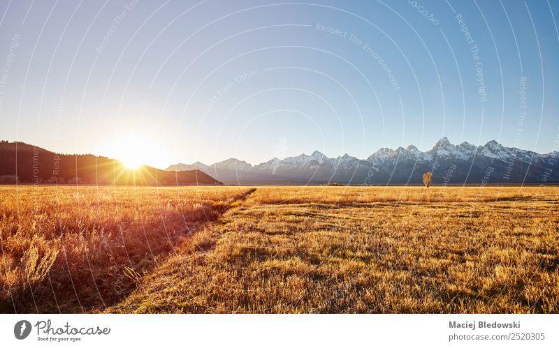 Golden sunrise at the Grand Teton National Park, USA. Sky Nature Vacation & Travel Sun Landscape Far-off places Mountain Autumn Lanes & trails Meadow Tourism