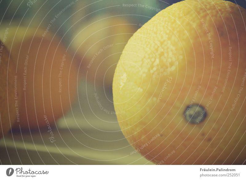 Blue Colour Healthy Orange Lie Fruit Food Fresh Nutrition Sweet Healthy Eating Round Near To enjoy Breakfast