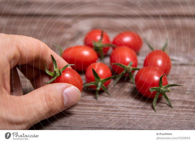 Cocktail tomatoes Food Vegetable Organic produce Vegetarian diet Healthy Eating Summer Agriculture Forestry Hand Fingers Wood Select Utilize To hold on Fresh