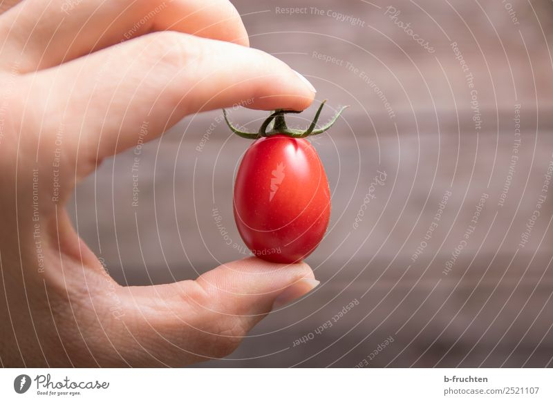 date tomato Food Vegetable Organic produce Vegetarian diet Healthy Eating Cook Kitchen Hand Fingers Select Utilize Touch Movement To hold on Sell Fresh Red