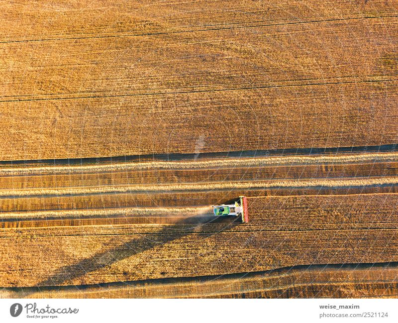 Harvester machine working in field. Combine machine Nature Summer Plant Landscape Autumn Lanes & trails Business Sand Work and employment Field Weather Earth