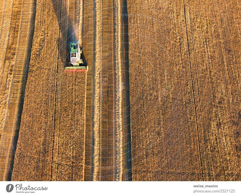 Combine machine harvesting agriculture wheat field Summer Plant Far-off places Autumn Meadow Business Work and employment Transport Field Weather Vantage point