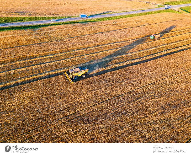 Harvester machine working in field Nature Summer Plant Landscape Far-off places Autumn Meadow Business Work and employment Field Weather Vantage point Growth
