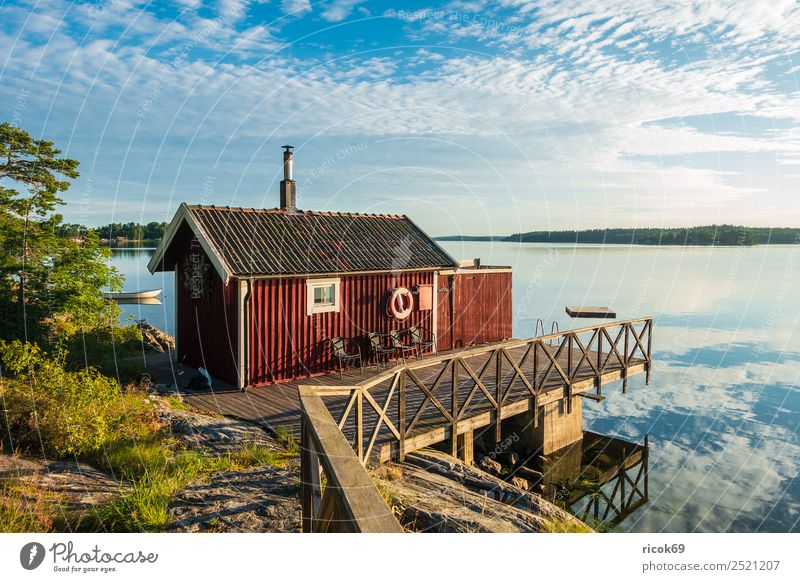 Archipelago off the Swedish coast of Stockholm Relaxation Vacation & Travel Tourism Island House (Residential Structure) Nature Landscape Clouds Tree Coast