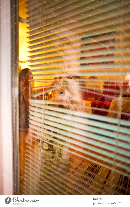 look at it Child Human being Toddler 1 - 3 years Window Door Observe Discover Looking Curiosity Moody Infancy Venetian blinds Rumbled Vista Colour photo