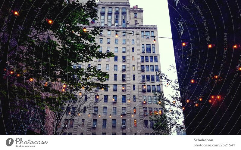 big city life City trip Flat (apartment) Architecture Sunrise Sunset Plant Tree Town Downtown High-rise Building Facade Terrace Observe To enjoy Illuminate
