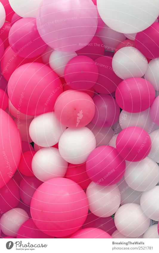 Close up background of purple pink and white air balloons Joy Feasts & Celebrations Pink Red White Colour Consistency Festive Purple size holiday template