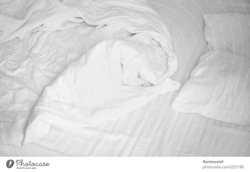White Bright Flat (apartment) Sleep Bed Bedclothes Sheet Bedroom Duvet Wake up Arise Pillow