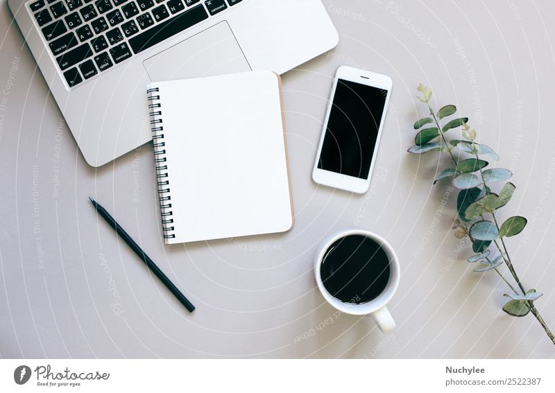 Creative flat lay photo of workspace desk Plant Green Leaf Lifestyle Business Art Copy Space Gray Work and employment Design Office Modern Vantage point