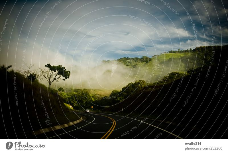Landscape Earth Air Clouds Summer Beautiful weather Fog Tree Forest Mountain Transport Traffic infrastructure Road traffic Highway Car Driving Vacation & Travel