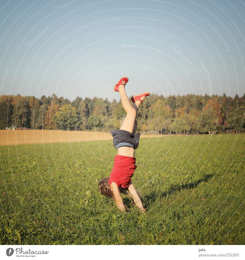 CHAMANSÜLZ   handstandhexel Human being Child Girl 1 3 - 8 years Infancy Environment Nature Landscape Sky Autumn Plant Tree Grass Meadow Forest Beautiful Joy