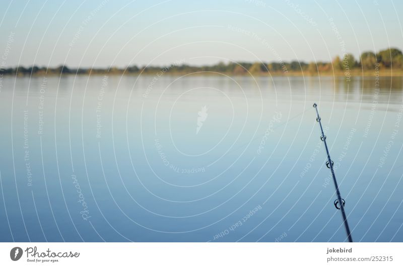 angler idyll Harmonious Relaxation Calm Leisure and hobbies Fishing (Angle) Landscape Water Sky Horizon Lakeside Fishing rod Catch To enjoy Free Natural Blue