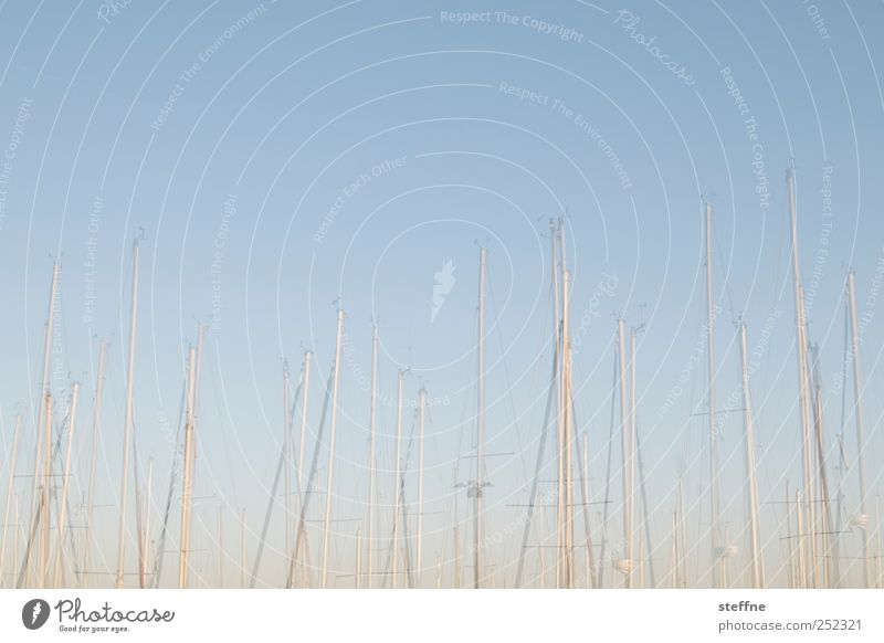 mast have Navigation Boating trip Fishing boat Yacht Sailboat Harbour Yacht harbour Vacation & Travel Sailing Sailing trip Double exposure Colour photo
