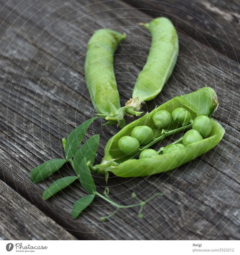 Peas count ... Food Vegetable Pea pods Environment Nature Plant Summer Leaf Agricultural crop Garden Wood Lie Authentic Fresh Healthy Uniqueness Natural Gray