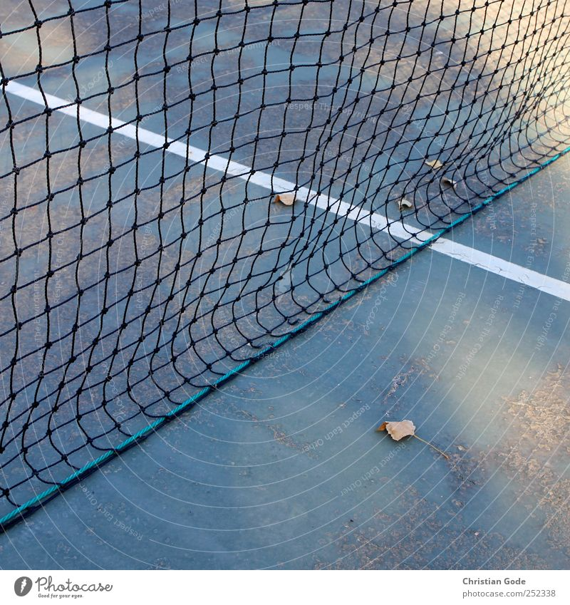 40:0 Leisure and hobbies Playing Summer Sports Ball Sporting Complex Green Line T-line Net Tennis Tennis court Leaf White Autumn Square Diagonal hard court