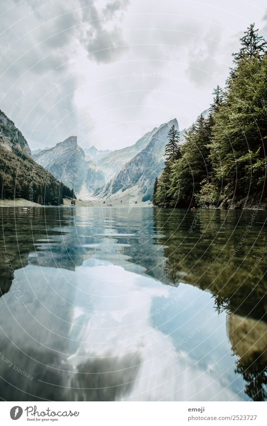 Seealpsee Leisure and hobbies Vacation & Travel Tourism Trip Adventure Freedom Environment Nature Landscape Autumn Alps Mountain Lake Natural Canton Appenzell