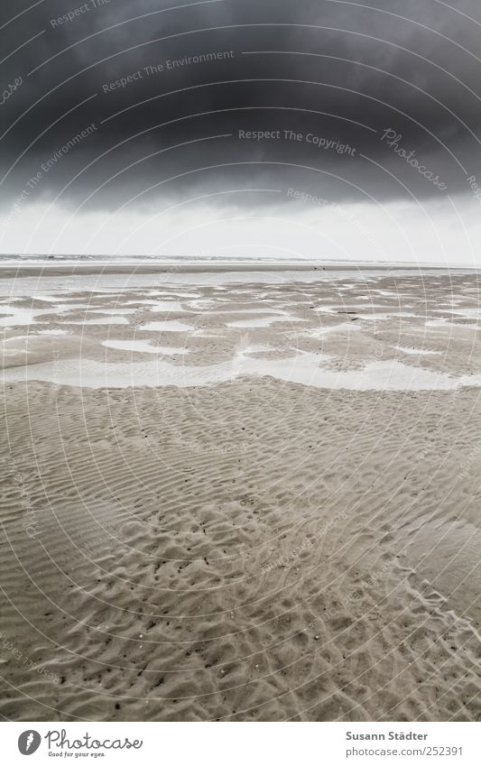 Sky Nature Beach Clouds Cold Dark Coast Lake Waves Climate North Sea Spiekeroog Tide Low tide Slick North Sea Islands
