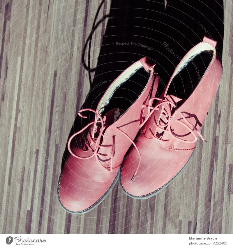 Red Style Fashion Footwear Modern Stripe Leather High heels Tasty Shoelace Laminate Object photography Leather shoes Pair of shoes