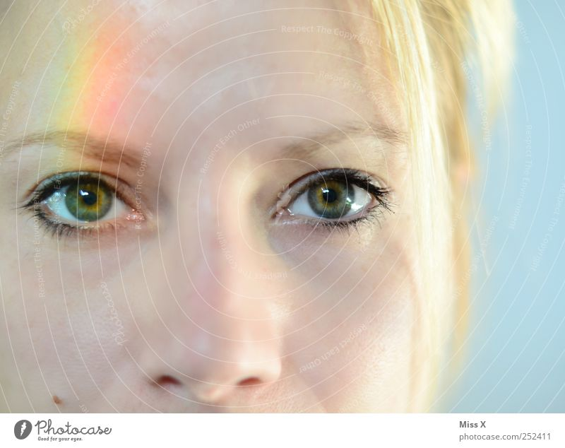 rainbow eye Feminine Face Eyes 1 Human being 18 - 30 years Youth (Young adults) Adults Beautiful Multicoloured Prismatic colors Prismatic colour Iris Rainbow