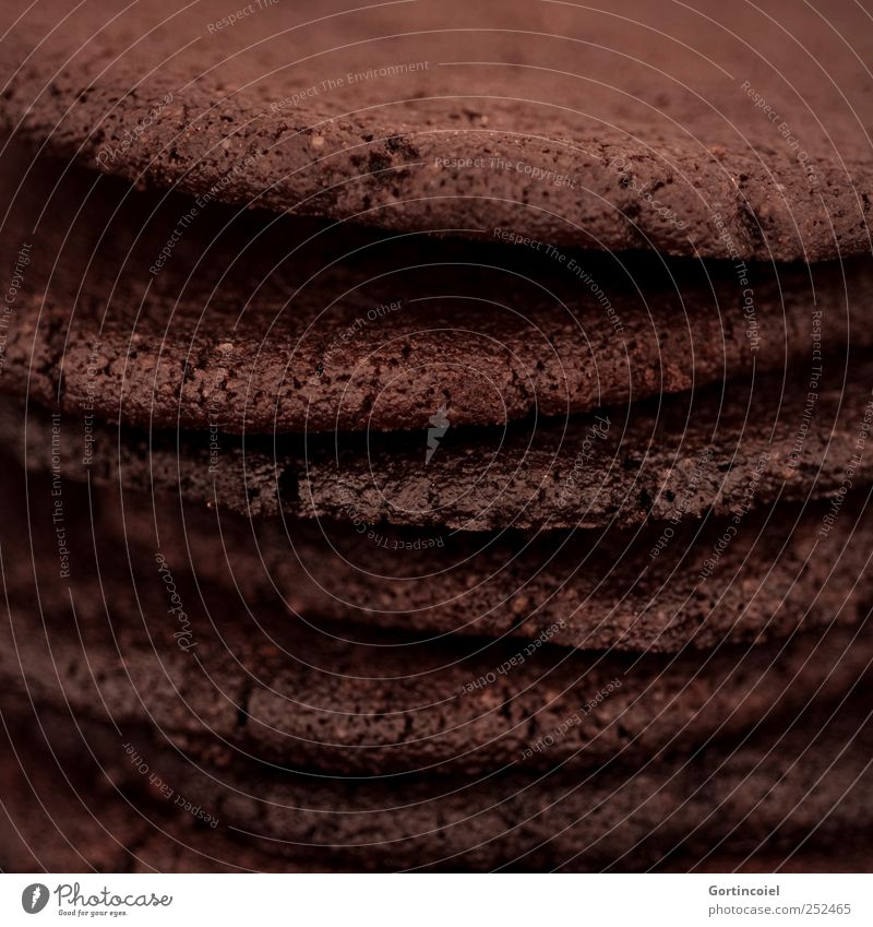 cookie Food Dough Baked goods Cake Candy Nutrition Delicious Sweet Brown Cookie Crunchy Nibbles Food photograph Colour photo Subdued colour Close-up Detail