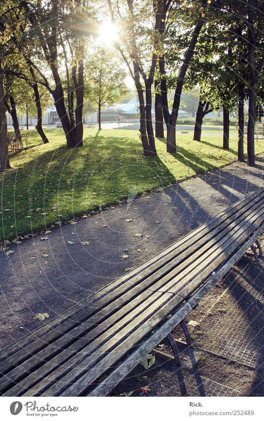 Calm Loneliness Relaxation Autumn Wood Lanes & trails Sand Park Bright Contentment Sit Serene Steel To enjoy Meditation Well-being