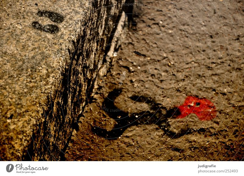 jumped Art Street Sign Graffiti Lie Jump Crazy Red Moody Death Exhaustion Symbols and metaphors Suicide Accident Blood Curbside Footprint Colour photo