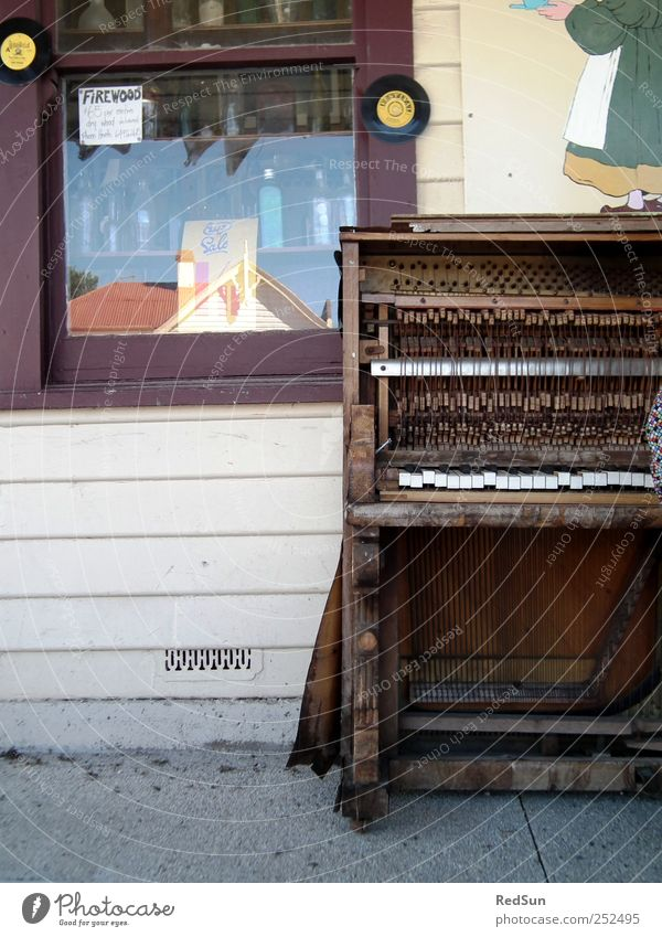 a matter of care Piano street music Roadside Music Musical instrument Wood Tasmania Playing Old Broken Decline decay Weathered Colour photo Exterior shot