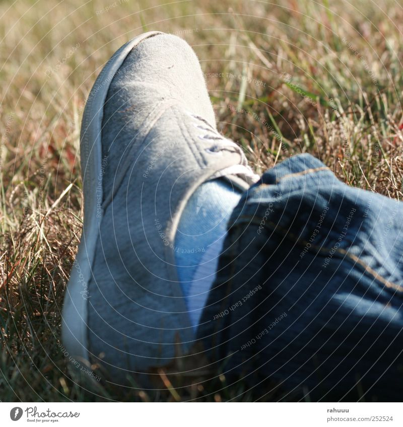 Happy Foot Lifestyle Style Friendship Legs Feet 1 Human being Nature Summer Beautiful weather Grass Meadow Jeans Footwear Crouch Blue Gray Moody Loneliness