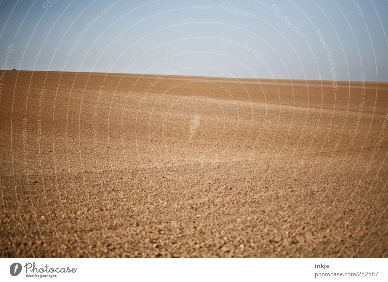 Blue Loneliness Far-off places Autumn Landscape Moody Brown Horizon Field Earth Arrangement Natural Empty Gloomy Infinity Agriculture