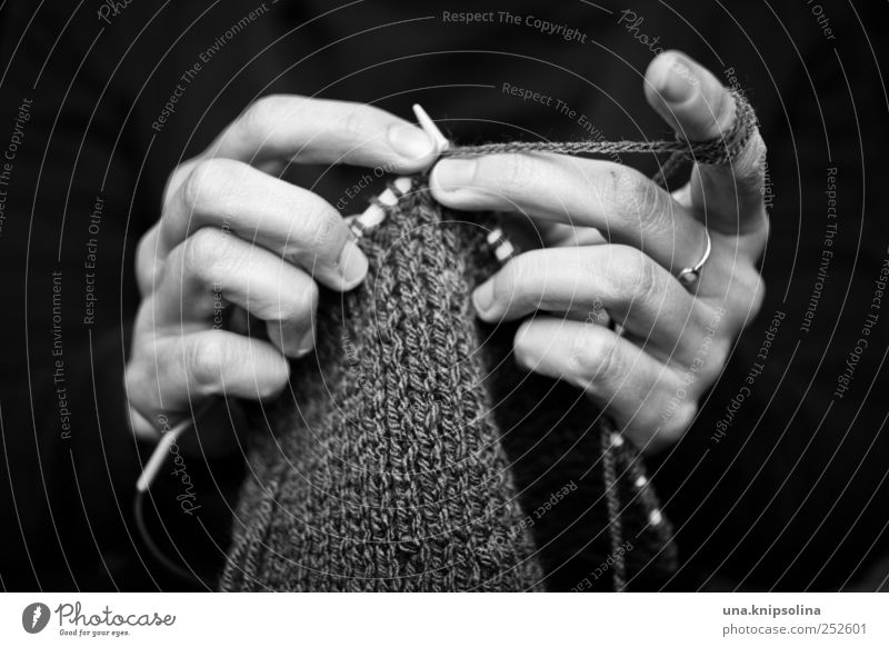 Human being Woman Hand Adults Feminine Movement Leisure and hobbies Authentic Fingers Creativity To hold on Ring Make Wool Knit Handcrafts