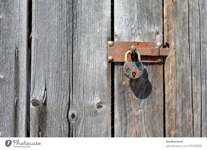 I've got a crime thriller under lock and key. Hut Wall (barrier) Wall (building) Facade Door Wood Metal Rust Line Lock Locking bar Old Gray Safety Protection