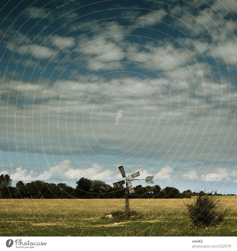 Nju Ennerdschi Vacation & Travel Tourism Trip Far-off places Technology Pinwheel Environment Nature Landscape Plant Sky Clouds Horizon Climate Beautiful weather