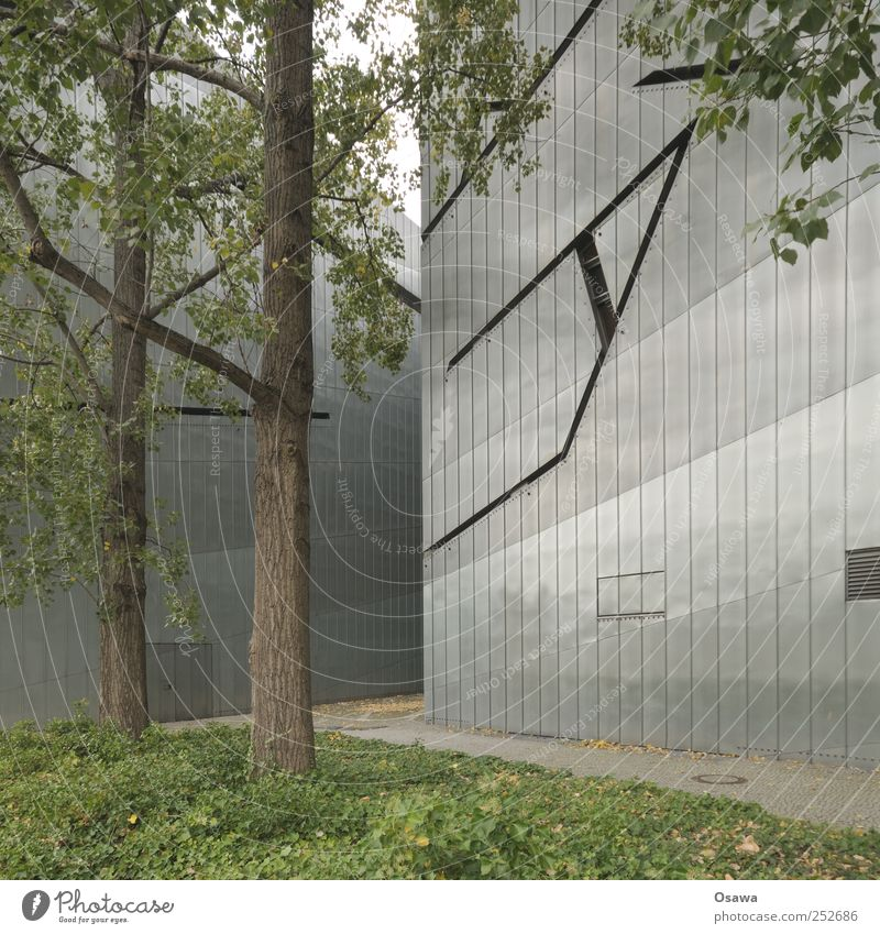 Jewish Museum 2 Berlin Architecture Building Manmade structures Judaism Tourist Attraction Sightseeing Facade Modern Tin Tree Tree trunk Leaf Green Gray Past