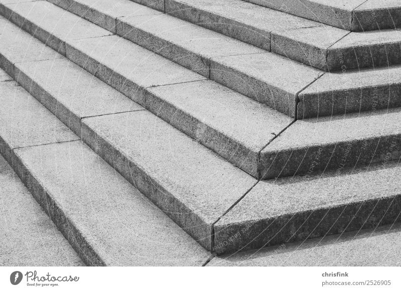 Steps sw Museum Stage House (Residential Structure) Manmade structures Architecture Stairs Terrace Lanes & trails Going Gray Black White Palace