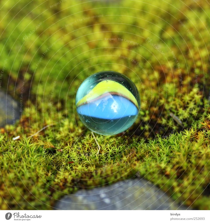 Small marble very big Children's game Marble Summer Moss Illuminate Round Beautiful Soft Blue Yellow Green Joy Infancy Nature Discovery Glass ball Exterior shot