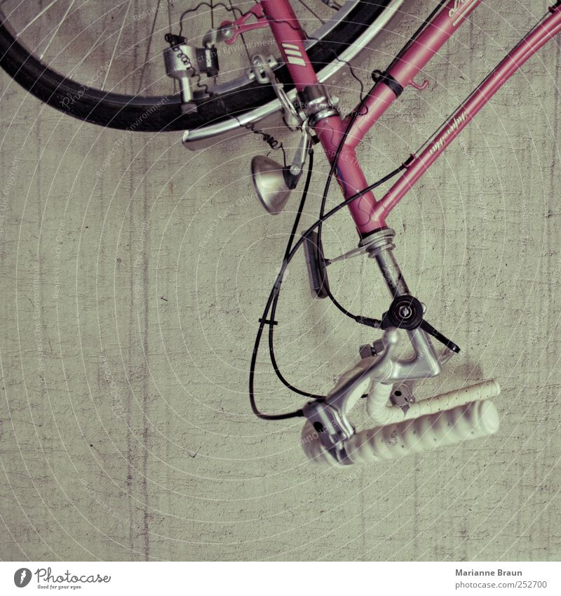 Old Wall (building) Gray Stone Dye Metal Bicycle Pink Wait Driving Hang Plaster Silver Tire Wire Leather