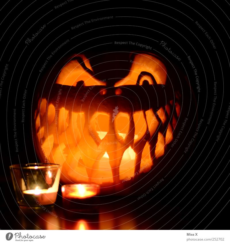 Happy Halloween Vegetable Hallowe'en Eyes Mouth Teeth Dark Creepy Facial expression Face Grinning Grimace Candle Candlelight Decoration Pumpkin
