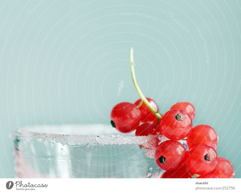 Sugar for the bears Food Fruit Nutrition Juice Glass Sweet Blue Red Sugar edge Redcurrant Berries Decoration Delicious Colour photo Interior shot